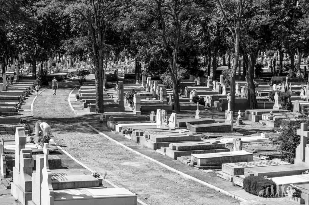 ¿Es un cementerio un lugar seguro durante un apocalipsis zombie?