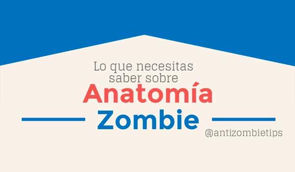Todo lo que necesitas saber sobre anatomía zombie